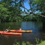 Town Creek - Fish, paddle and picnic on the shady banks of this beautiful Cape Fear estuary