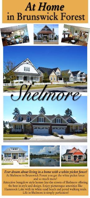 Shelmore flyer