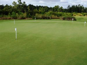 Practice Putting Green