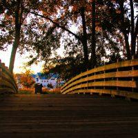 Meadow Park Bridge