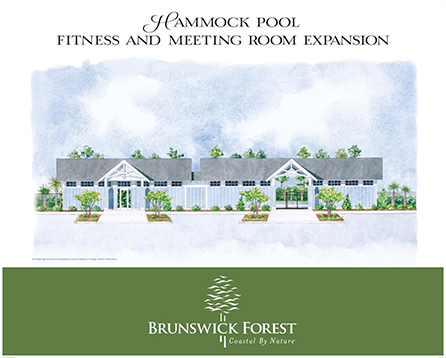 Expansion Coming To Hammock Pool Brunswick Forest