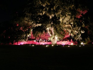 ENCHANTED EVENINGS AND EVENTS AT AIRLIE GARDENS, WILMINGTON, NC