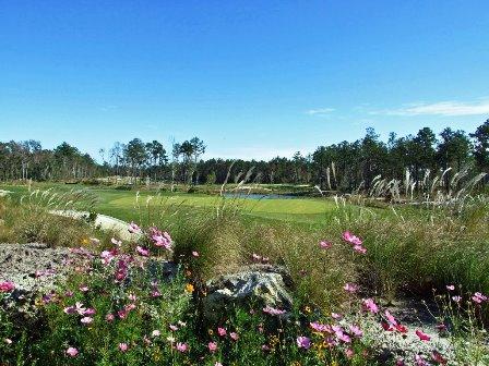 Cape Fear National Golf Course