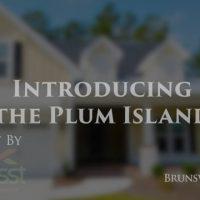 Plum Island by Trusst Builders